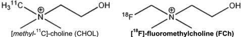 Разновидности РФП на основе холина